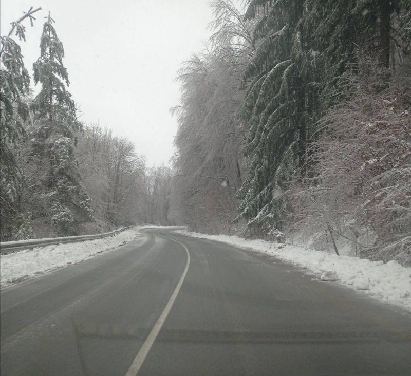 Ичеренският път днес, 13 януари - и пътищата от републиканската мрежа в планинската част на областта са почистени до асфалт. Снимка: Областно пътно управление - Сливен.