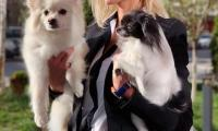 Cvety the Dog mother