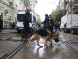 В опазването на обществения ред са включени и полицейски кучета