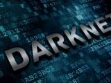 """""""Тъмната мрежа"""""""