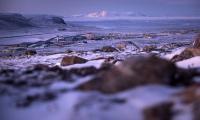 Арктика трябва да остане регион на мир и слабо напрежение Необходимост за справяне с тревожните последици от изменението на климата в Арктика Струпването на руски военни сили в Арктика не е оправдано Евродепутатите искат Арктика да остане зона на мир и к